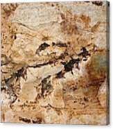 Rockscape 3 Canvas Print