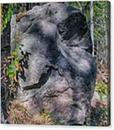 Rocky Ancestor Canvas Print