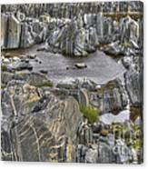 Rocky Arctic Shoreline Canvas Print