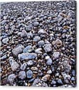 Rocky Beach Normandy France Canvas Print