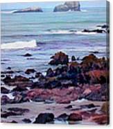 Rocky Coast Off San Simeon Canvas Print