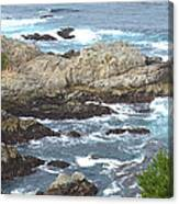 Rocky Cove Detail Canvas Print