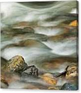 Rocky Creek Canvas Print