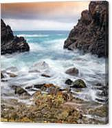 Rocky Forster 010 Canvas Print