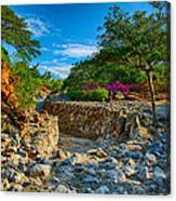 Rocky Garden Walk Canvas Print