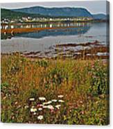 Rocky Harbour-nl Canvas Print