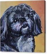 Rocky Jones Canvas Print