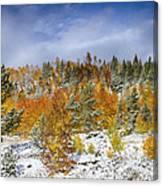 Rocky Mountain Autumn Storm Canvas Print