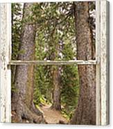 Rocky Mountain Forest Window View Canvas Print