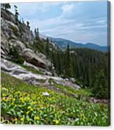 Rocky Mountain Summer Canvas Print