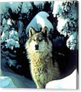 Rocky Mountain Wolf Canvas Print