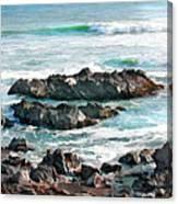 Rocky Ocean Shoreline One Canvas Print