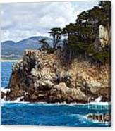 Rocky Outcropping At Point Lobos Canvas Print