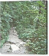 Rocky Path Canvas Print