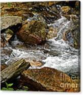 Rocky River 2 Canvas Print