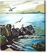 Rocky Seashore And Seagulls Canvas Print