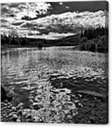 Rocky Shore Of The Moose River Canvas Print