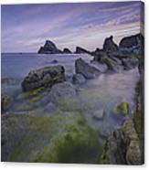 Rocky Shoreline Canvas Print