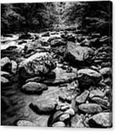 Rocky Smoky Mountain River Canvas Print