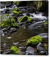 Rocky Stream 03 Canvas Print