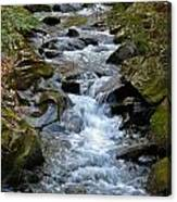 Rocky Stream Canvas Print