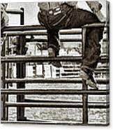 Rodeo Fence Sitters- Sepia Canvas Print