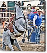 Rodeo Horse Cheers Canvas Print