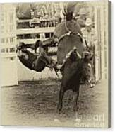 Rodeo Learning To Fly Canvas Print