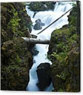 Rogue River Falls 1 Canvas Print