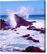 Rogue Wave Canvas Print