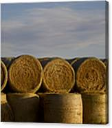 Rolled Hay   #1056 Canvas Print