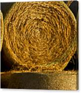 Rolled Hay   #1074 Canvas Print