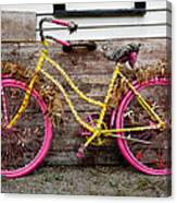 Rolling On Pink Canvas Print