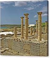 Roman Ruins Of Baelo Claudia Canvas Print