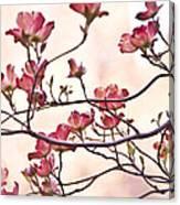Romance Flora Canvas Print