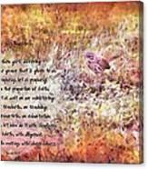 Romans 12 68 Canvas Print