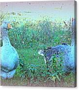 I Try To Be As Romantic As A Simple Goose But I Know Too Much  Canvas Print