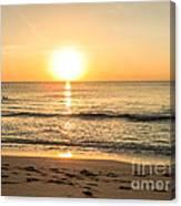 Romantic Ocean Swim At Sunrise Canvas Print