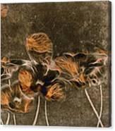 Romantiquite -  04c Canvas Print