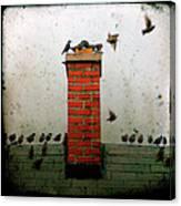 Roof Top Hoppers Canvas Print