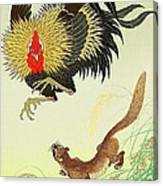 Rooster And Weasel Canvas Print