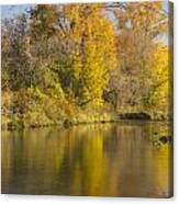 Root River Autumn 1 Canvas Print