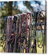 Rope Halters For Horses Lined Canvas Print