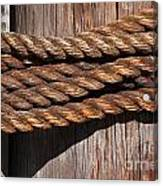 Roped Canvas Print