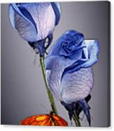 Rosa Azul With Orange Canvas Print