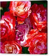 Rose 124 Canvas Print