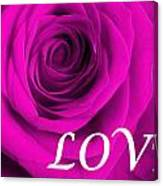Rose 16 Love Canvas Print