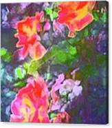 Rose 192 Canvas Print
