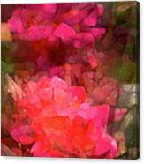 Rose 198 Canvas Print