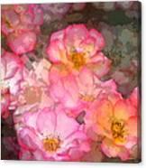 Rose 210 Canvas Print